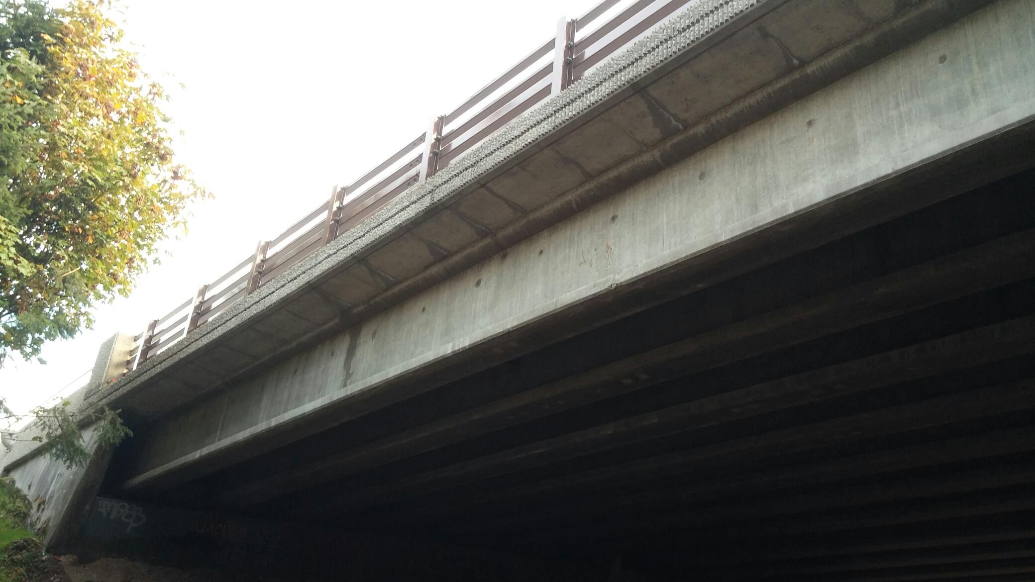 4._Underside_of_sidewalk.jpg